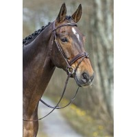 TOP SELECT BRIDLE